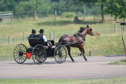 Why do the Amish Reject Modern Technology? | Amish Valley